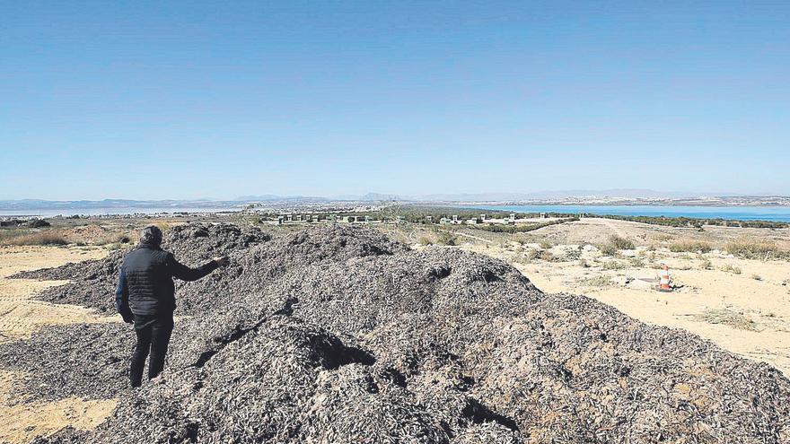 Torrevieja paga otros 90.485 euros por el parque abandonado del Mirador de la Casilla
