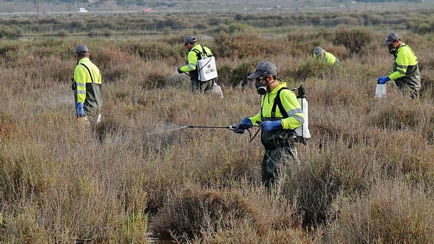 La Diputación ayuda a Crevillent a combatir vertidos y mosquitos