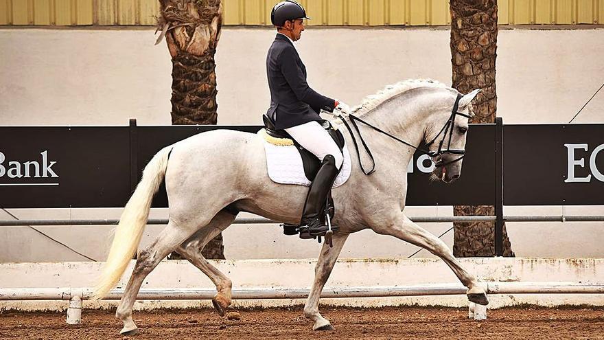 Devolviendo el prestigio del caballo español desde Sant Llorenç