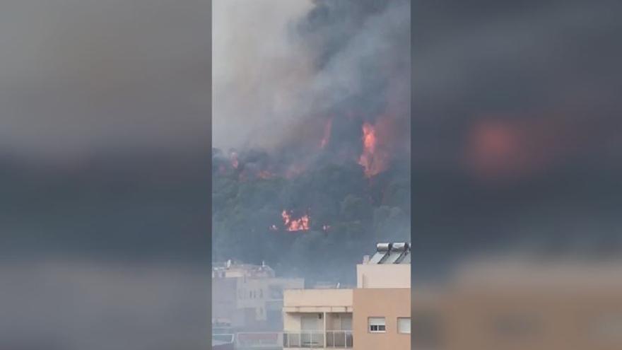 Incendio en Oliva obliga a desalojar dos colegios