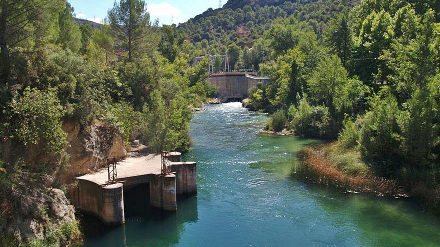 El Tajo no necesita subir su caudal para mantener la biodiversidad del río