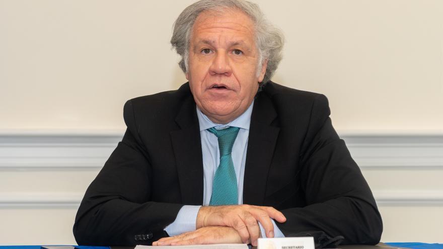 Solicitan que se suspenda la participación de Nicaragua en la OEA