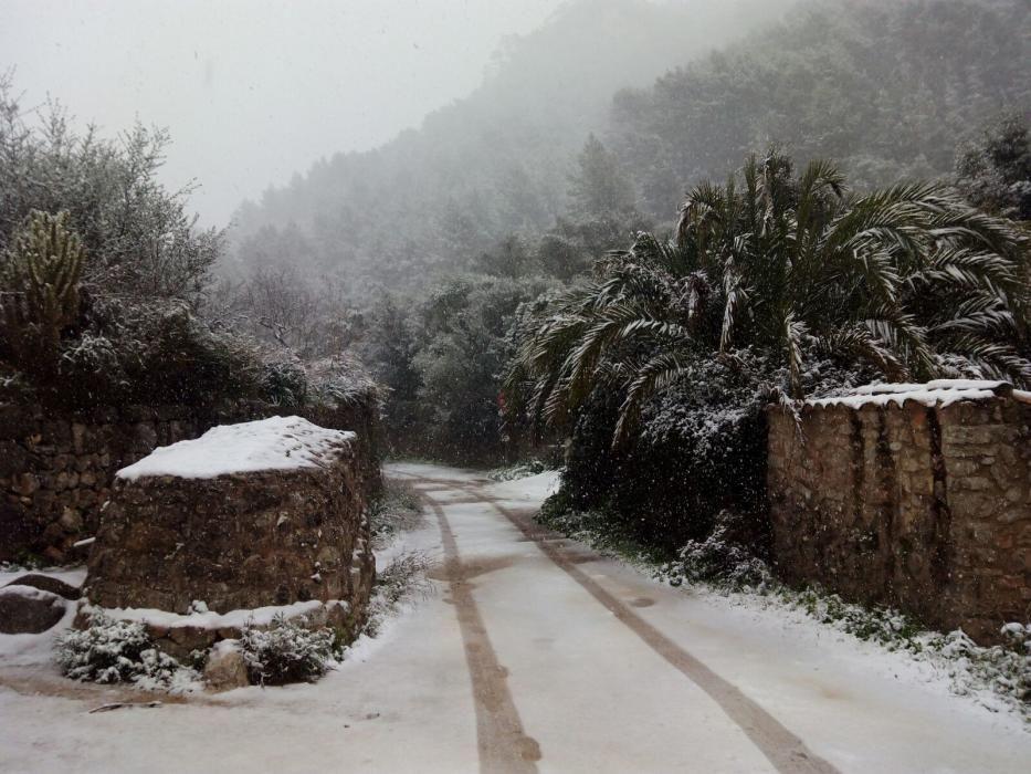 Im Laufe des Dienstagvormittags (17.1.) bedeckten die Flocken zunächst die höher gelegenen Bergpässe auf Mallorca, später auch die tiefer liegenden Gebiete der Insel. Gegen Mittag waren die ersten Strände im Inselnorden weiß bedeckt.