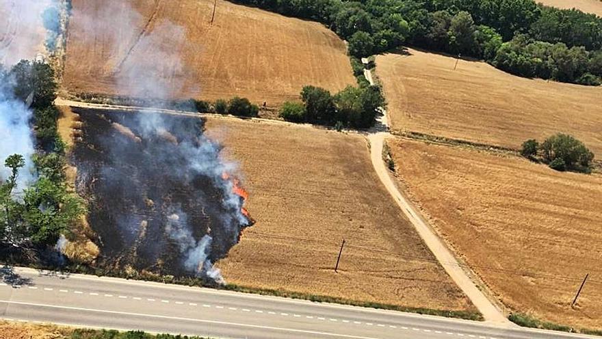Cremen 3.000 m2  d'un camp d'Orriols