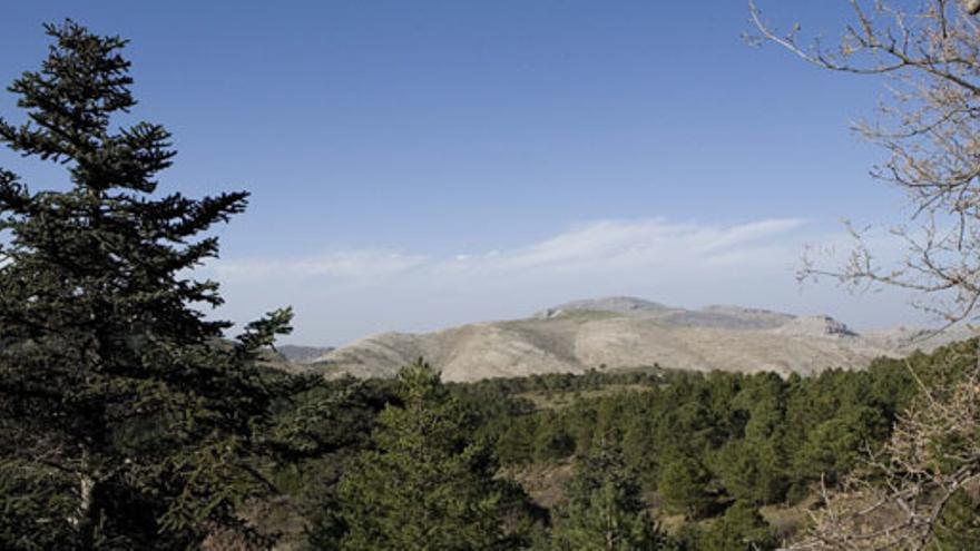 Aprobada en primera lectura la propuesta del Parque Nacional de la Sierra de las Nieves