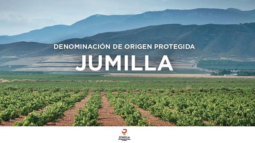 El CRDOP Jumilla se une a FIVIN para respaldar su uso responsable