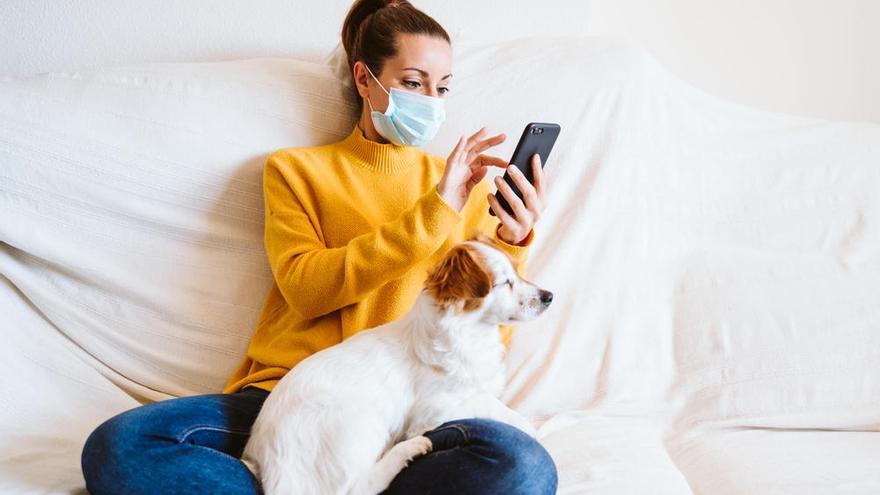Una empresa española lanza un test del coronavirus para animales domésticos