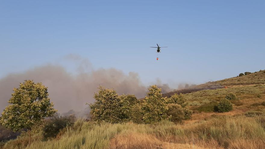 El incendio de Figueruela de Abajo fue intencionado y afectó a 4,6 hectáreas