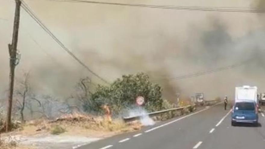 Incendio en El Paso, en La Palma (17/08/2021)