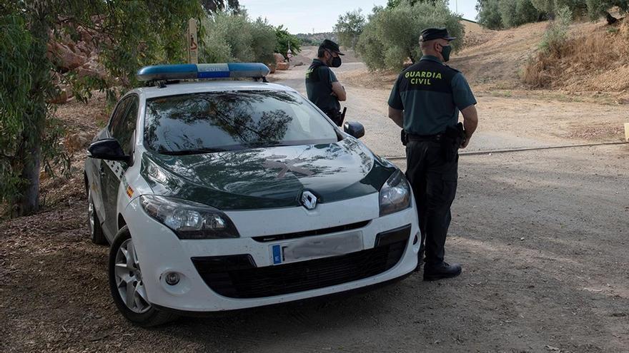 Siete detenidos en una persecución por la A-23 tras robar cáñamo en una plantación de Calamocha