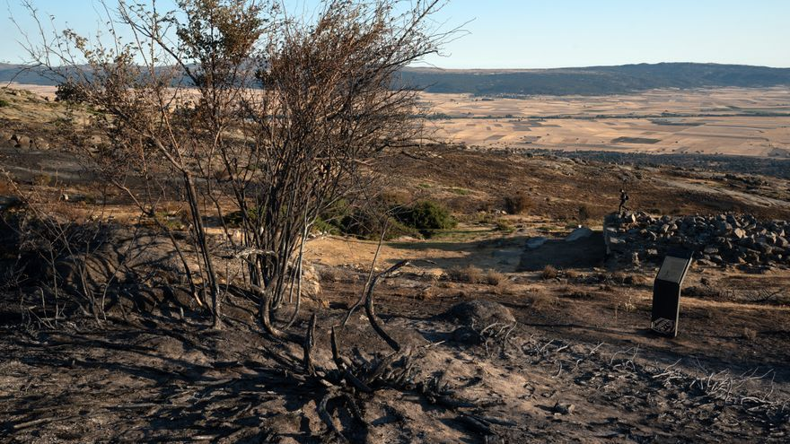 Castilla y León solicita la declaración de zona catastrófica por el incendio de Ávila, ya estabilizado