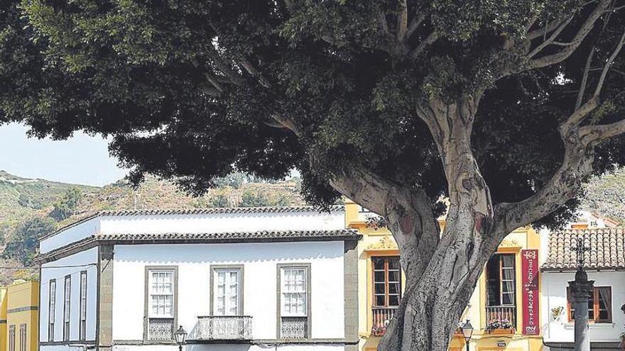 El Cabildo acelera el hotel de Teror y la renovación del paseo de Salinetas