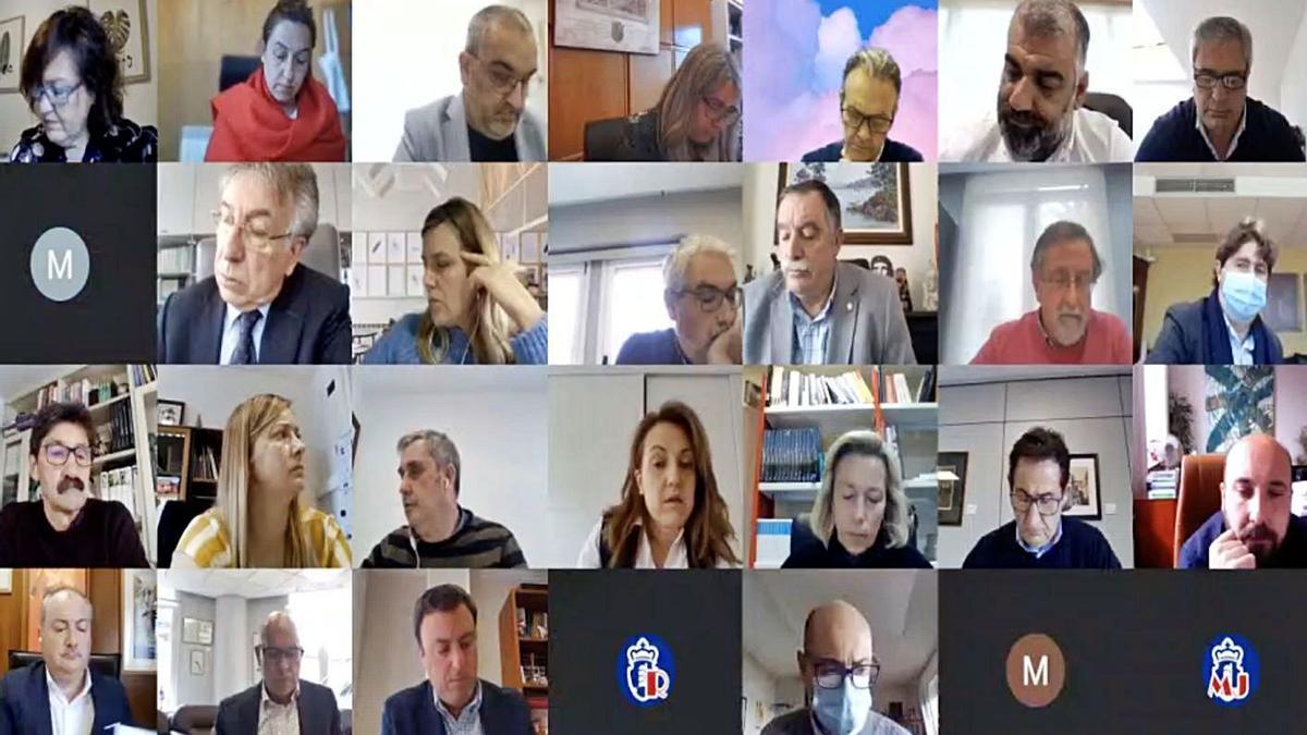 Diputados, ayer, durante el pleno telemático de la Diputación de A Coruña.   | // LA OPINIÓN