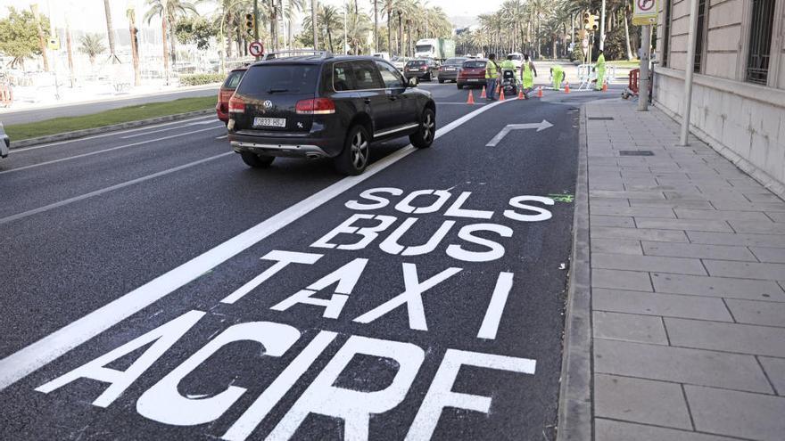 In Palma gelten neue Verkehrsregeln