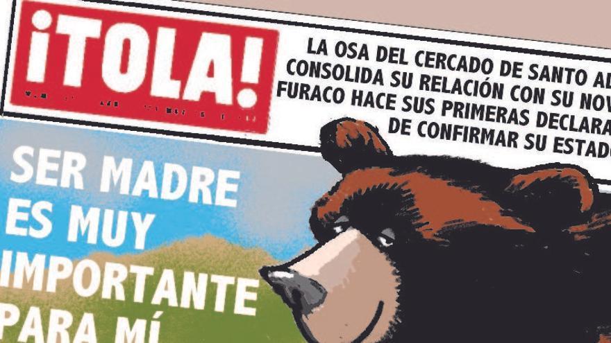 La osa Tola, estrella mediática: las tiras cómicas que protagonizó