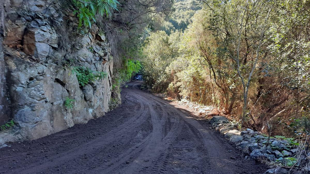 Carretera entre Gallegos y Las Mimbreras.