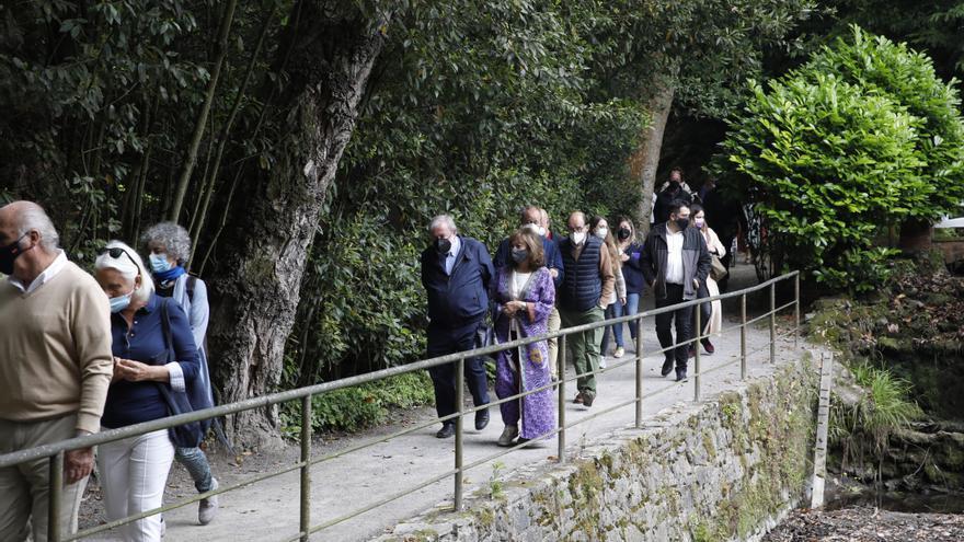 Foro pide a Aurelio Martín su plan de gestión del Jardín Botánico