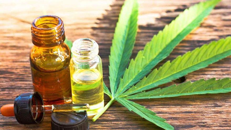 El parque científico de la UA lidera la investigación del cannabis terapéutico a nivel internacional