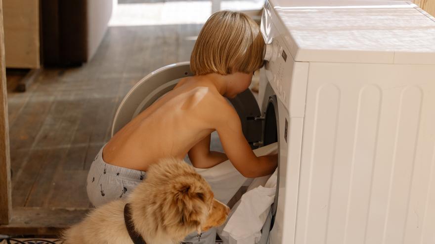 El truco que seguro no conoces para que los pelos de tu mascota no atasquen la lavadora al hacer la colada