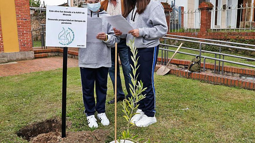 El Luisa de Marillac planta un olivo y entierra una caja simbólica sobre la pandemia
