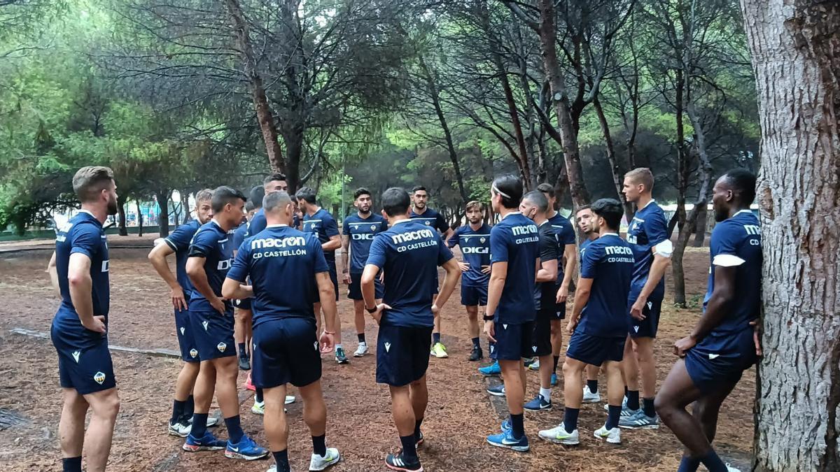 Los jugadores del Castellón, durante un entrenamiento en El Pinar.