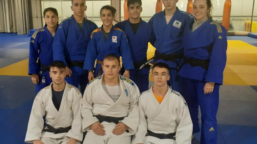 Ocho judokas del equipo asturiano junior se entrenan con la élite mundial
