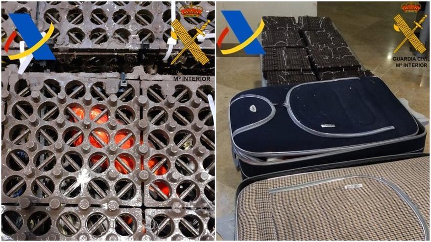 Interceptan 161 aves silvestres en unas maletas en el aeropuerto de Manises