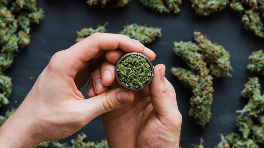¿Cómo está regulado el uso del cannabis en el mundo?