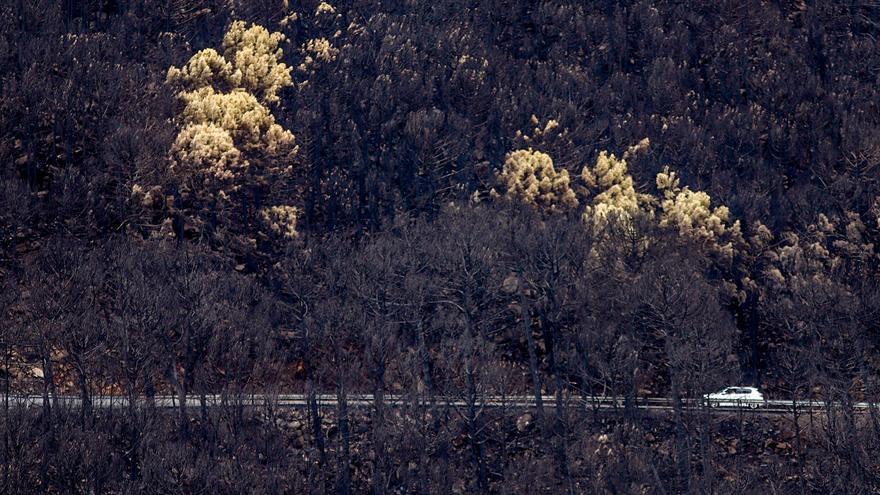 El Infoca da por extinguido el incendio de Sierra Bermeja