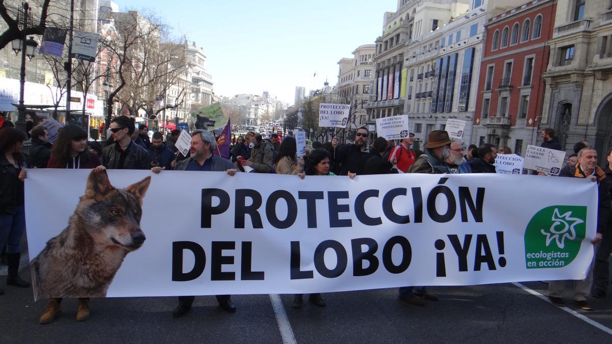Manifestación a favor de la protección del lobo de Ecologistas en Acción