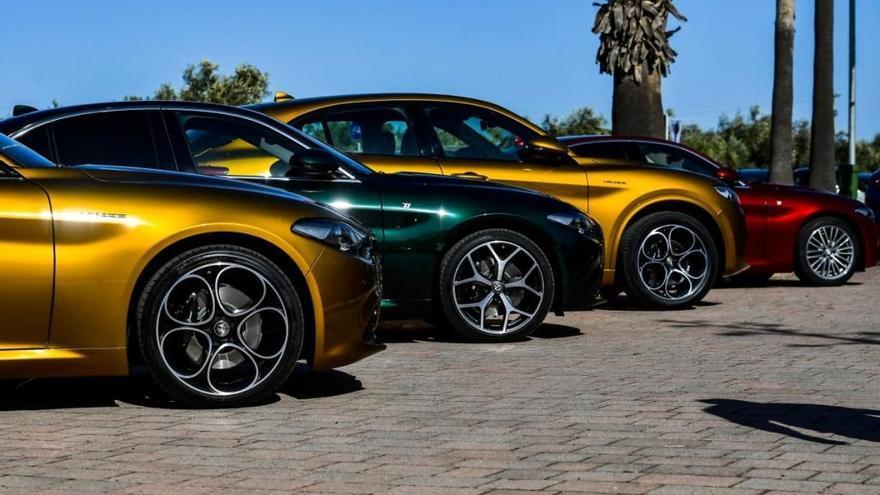 Nuevos Alfa Romeo Giulia y Stelvio 2020