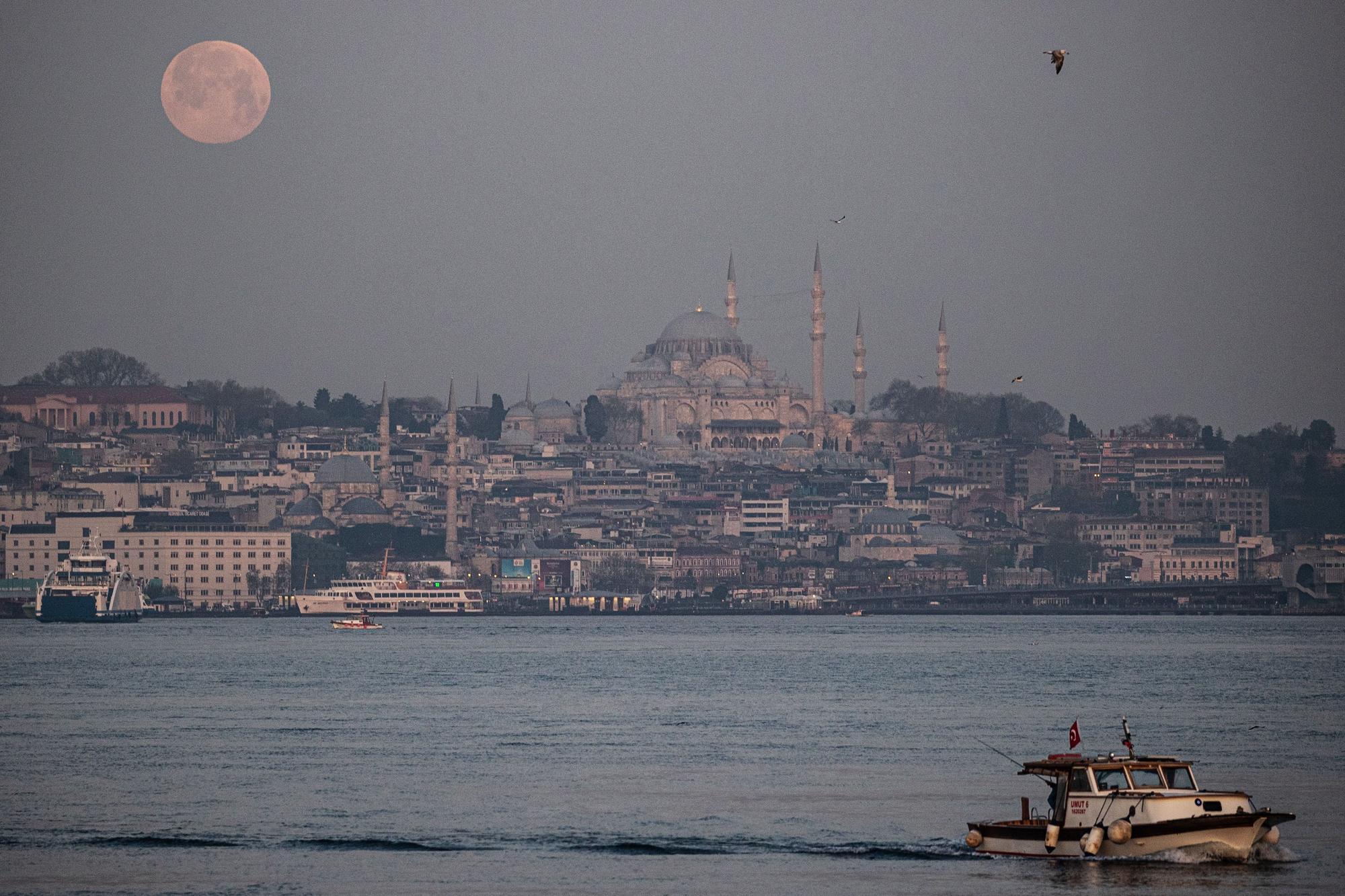 Super full moon seen (109393346).jpg