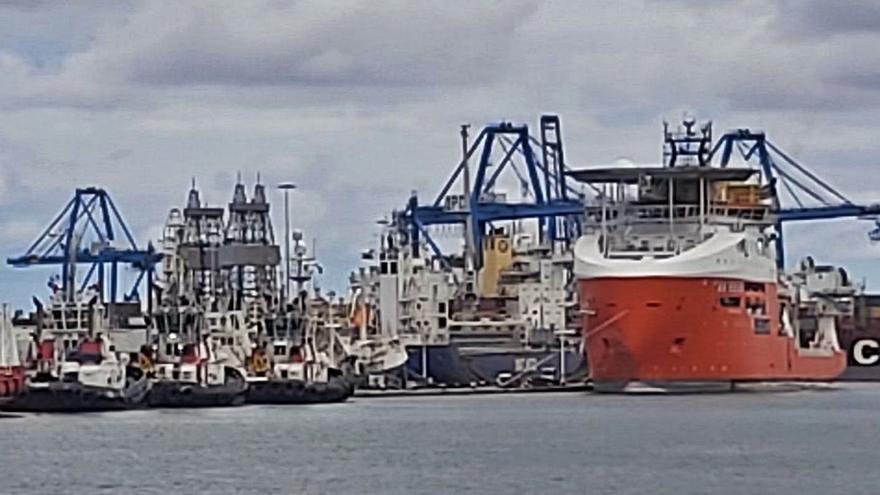 La policía busca un alijo de droga en un barco con una carga de millo en el Puerto