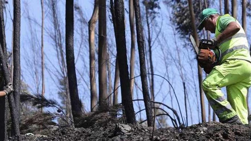 Los bomberos atajan el gran incendio de Portugal del que restan dos focos en Góis