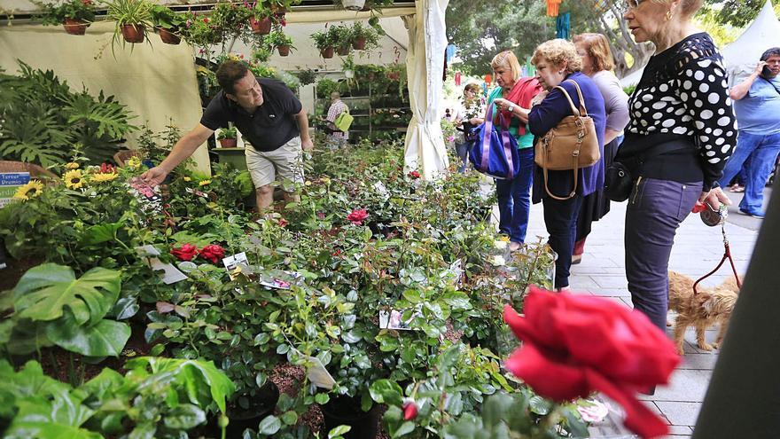 La Exposición de Flores y Artesanía de Mayo se traslada al recinto ferial