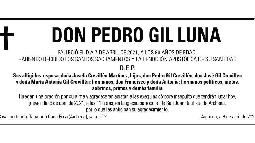 D. Pedro Gil Luna
