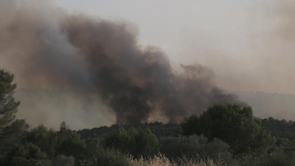 L'Ajuntament de Ventalló tenia previst netejar la zona on es va originar l'incendi