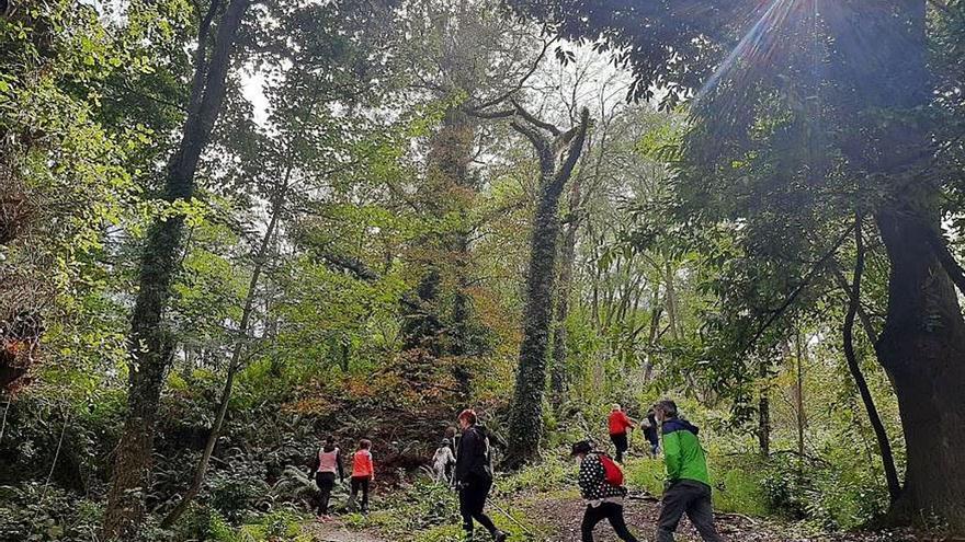 """Los vecinos disfrutan de las rutas guiadas por el """"Oviedo verde"""": 549 visitas en un mes"""
