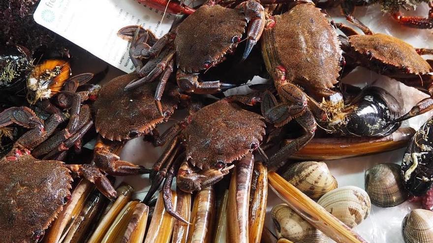 Una empresa coruñesa de pesca artesanal reivindica precios justos para el sector