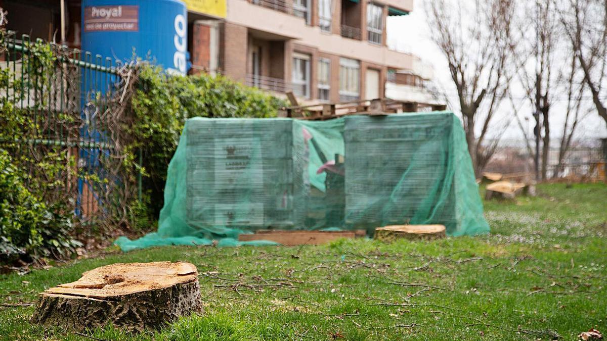 Varios árboles talados en los jardines de Eduardo Barrón.   Jose Luis Fernández