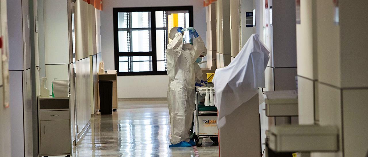 Pasillo central de la planta Covid del Hospital Can Misses. | VICENT MARÍ
