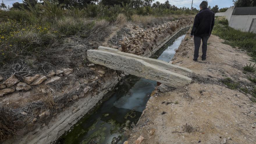 Elche solicita al ministerio una ayuda para elaborar un plan de mejora la red de riego del Palmeral