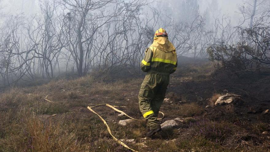 Condenan a la Xunta por la muerte de un agente forestal en un incendio en Guntín