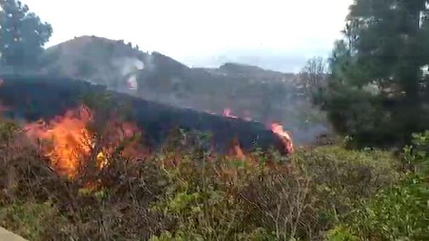 En acción los recursos y equipos sanitarios del plan de evacuación de La Palma