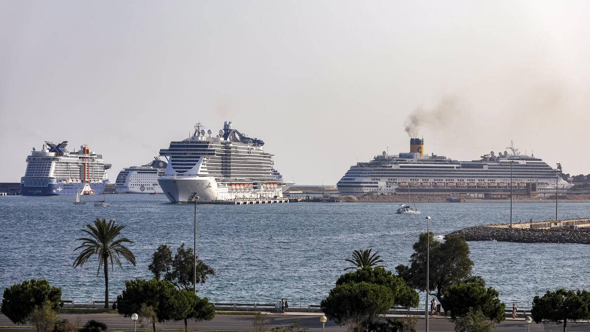 Cuatro cruceros en Palma en 2019