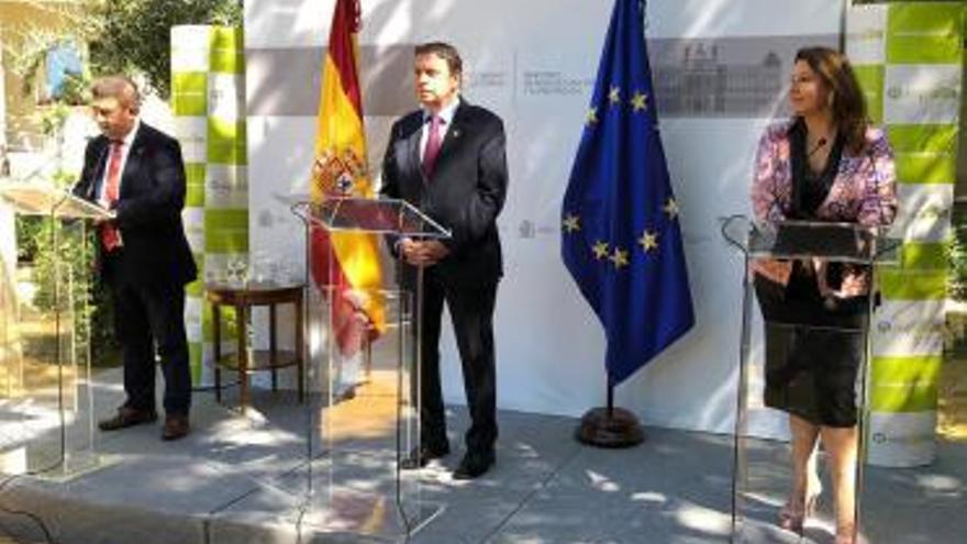 La feria Expoliva de Jaén tendrá ocupado el 100% de espacio expositivo