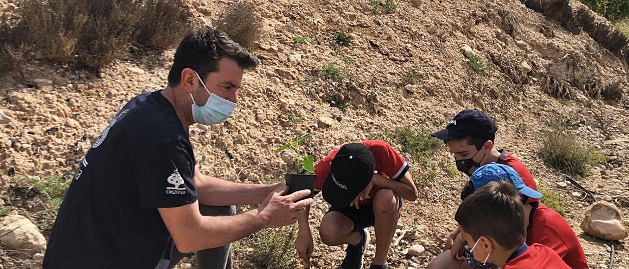 Arturo Valls, con unos niños en Crevillent y, a la derecha, con integrantes de la ONG Oxizonia durante este fin de semana en una reforestación en el Baix Vinalopó.   INFORMACIÓN