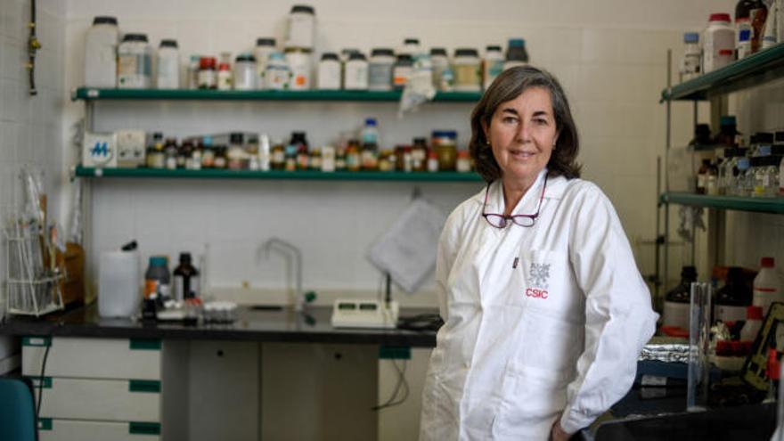 """María Luisa Coderch, química: """"La ciencia es prueba y error: si no experimentamos, no descubrimos"""""""