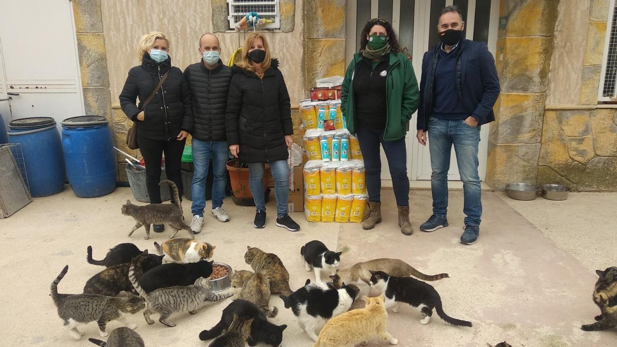 Entrega a la Protectora de Animales de Ibi del material donado, con la compañía de varios de los gatos que residen en el albergue.