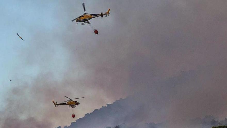 El incendio forestal de Sant Josep se originó en el cañaveral del torrente
